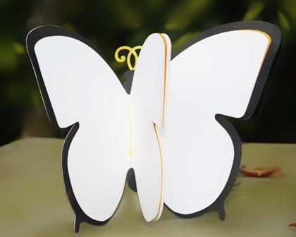 ButterflyWeb_2