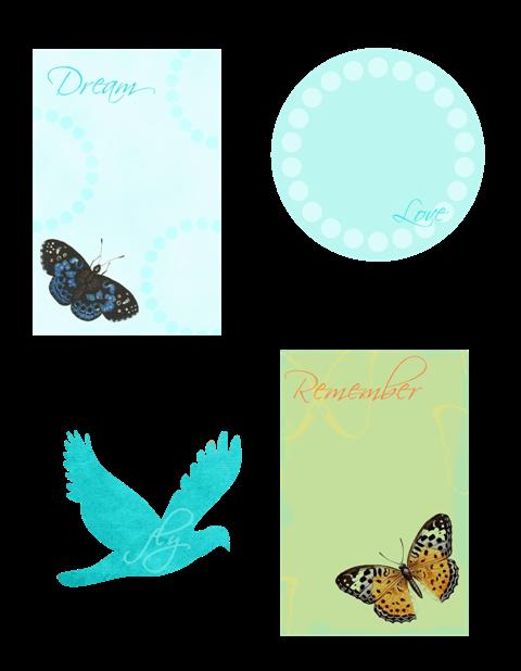 ButterflyWeb_3