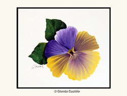 Colorful Pansy Hand-Painted Card